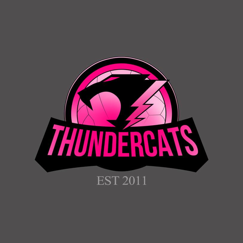 ThunderCats Netball Logo